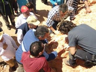 gran-interes-por-las-rocas-sedimentarias