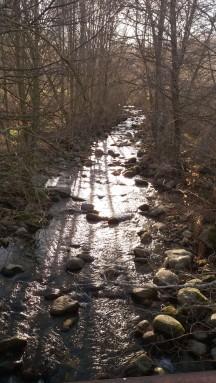 Arroyo de montaña perteneciente a la red de drenaje.