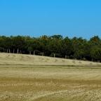 Descubrir los cinturones de dunas de Ávila