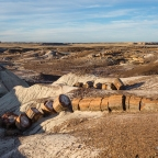 #Geopostales | Petrified Forest National Park (Arizona, USA)